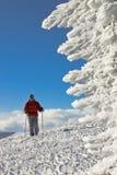 Sciatore sulla parte superiore della collina vicino alla figura del ghiaccio Fotografia Stock