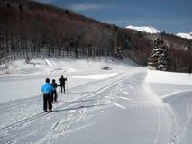 Sciatori che attraversano il pæse Immagine Stock