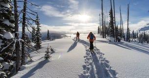 Sciatori che camminano attraverso la polvere fresca Immagini Stock