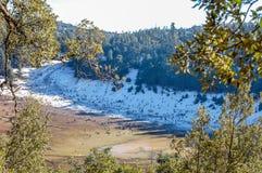 Sciatori che sciano in discesa sulla neve fresca della polvere con il sole e le montagne Fotografia Stock Libera da Diritti