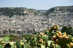 Scicli and Prickly pears. Pricly pears in sicily Italy with scicli in background, one of the symbolic cities of Italian baroque, along with other 7 Val di Noto`s royalty free stock image