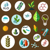 Science and agronomic research flat icons Stock Photos