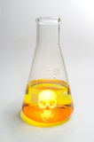 Science Beaker Skull Stock Image