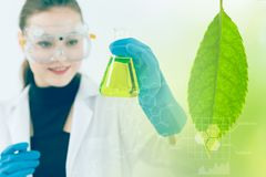 Science and Bio Technology of Green nature herbal extraction royalty free stock photo