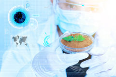 Science, biology, ecology, research concept. Stock Photo