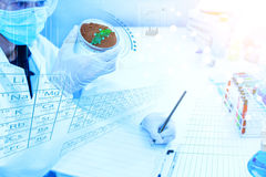 Science, biology, ecology, research concept. Royalty Free Stock Photos