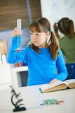 Science class at primary school. Elementary age school girl looking at test tube in science class at primary school Royalty Free Stock Photos