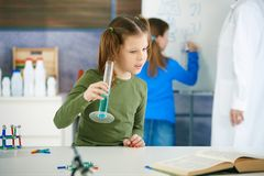 Science class at primary school Stock Photography