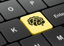 Science concept: Brain on computer keyboard background. Science concept: computer keyboard with Brain icon on enter button background, 3D rendering Royalty Free Stock Image