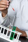 Science Experiment Stock Image