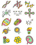 Science icons set with genetic and microbiologic objects stock illustration