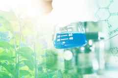 Science lab with chemical theme Royalty Free Stock Photos