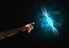 Science medicine and technology concepts as DNA molecule on dark background with connection lines. Close of man hand presenting DNA molecule research as concept Royalty Free Stock Photography