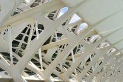 Science museum in Valencia. El Museu de les Ciencies Principe Felipe royalty free stock photos