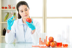 Science researcher holding up a GMO plant Stock Photography