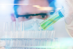 SCIENCE Scientist is certain activities on experimental scienc Stock Image