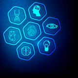 Science Set Royalty Free Stock Images
