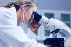 Science student looking through microscope in the lab Stock Photography