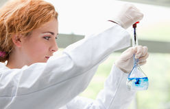Science student putting blue drops in a liquid Stock Images