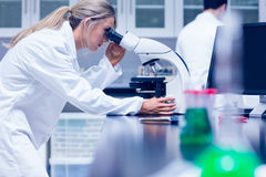 Science student working with microscope in the lab Royalty Free Stock Photography