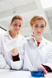 Science students doing an experiment Stock Image