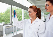 Science students looking at a graduated cylinder Royalty Free Stock Image
