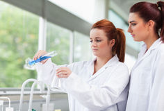 Science students pouring liquid in an flask Royalty Free Stock Photography