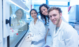 Science students using pipette in the lab Royalty Free Stock Images