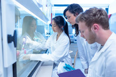 Science students using pipette in the lab Stock Photo