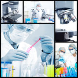 Science Team Royalty Free Stock Photo