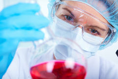 Science Team Stock Photo