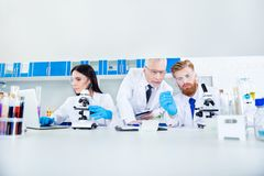 Science and teamwork concept - a group of three scientists are m. Aking research in clinical laboratory in labcoats. Cropped photo Royalty Free Stock Photo