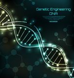 Science Template, Wallpaper or Background with a DNA Molecules. Illustration Vector Royalty Free Stock Photo