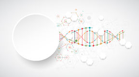 Science template, wallpaper or banner with a DNA molecules. Vect Stock Photography