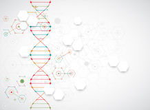 Science template, wallpaper or banner with a DNA molecules. Stock Photos