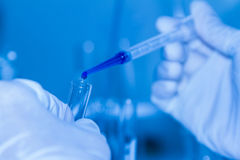 Science tools for test and analysis with laboratory and biology. Royalty Free Stock Photo