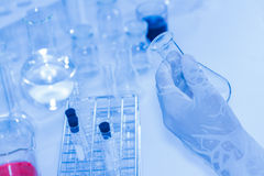 Science tools for test and analysis with laboratory and biology. Stock Image
