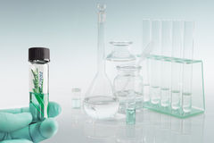 Scientific background with laboratory glassware, text space Royalty Free Stock Photo