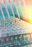 Scientific background. Multichannel pipette tips for DNA analysi Royalty Free Stock Photography