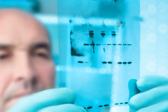 Scientific background: scientist with X-ray film. Scientific background. Scientist checks sizes of recominant proteins on Western Blot. Shallow DOF,  focus on Stock Photo