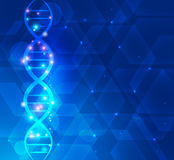 Scientific DNA background Stock Images