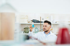 Scientific investigation Royalty Free Stock Photo