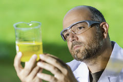Scientific laboratory investigated liquid Royalty Free Stock Photo