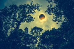 Scientific natural phenomenon. Total solar eclipse with diamond Stock Photos