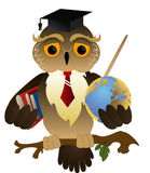 Scientific owl Royalty Free Stock Photo
