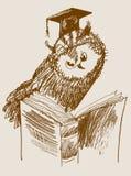 Scientific owl. vector Royalty Free Stock Photos