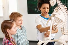 Nice happy children working in a team royalty free stock photos