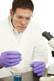 Scientific Research Royalty Free Stock Photo