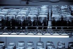 Scientific Research Incubator Stock Image