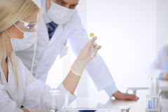 Scientific research team with clear solution in laboratory Stock Images